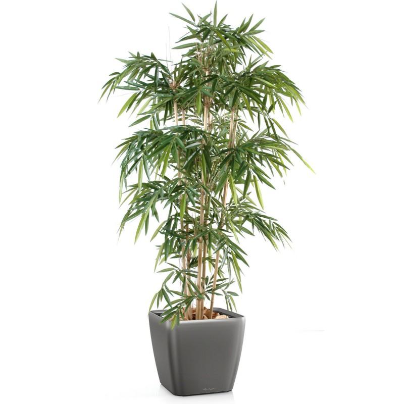 Le cycas artificiel for Plante artificiel interieur